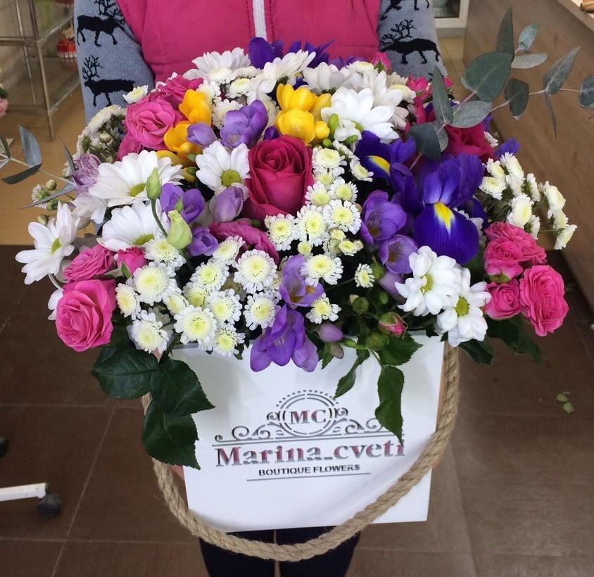 Купить цветы из голландии на кмв заказ офисных цветов